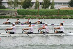 GAV03230